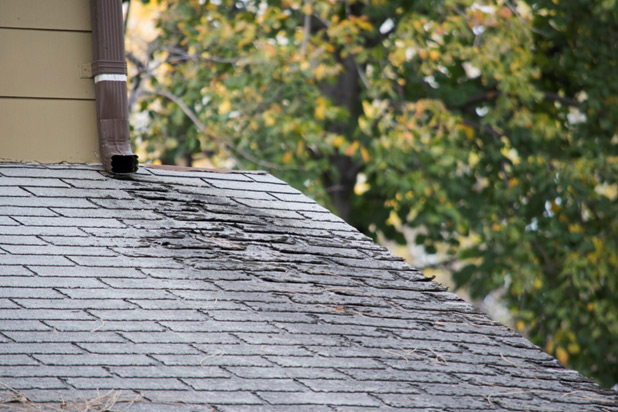 5 Preventative Measures to Take to Protect Your Home's Roof