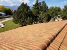 Tile Roof_3